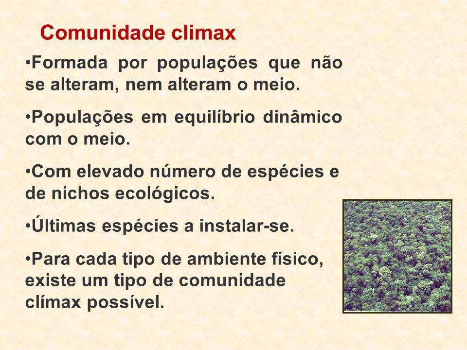 Comunidade climax Formada por populações que não se alteram, nem alteram o meio. Populações em equilíbrio dinâmico com o meio. Com elevado número de e