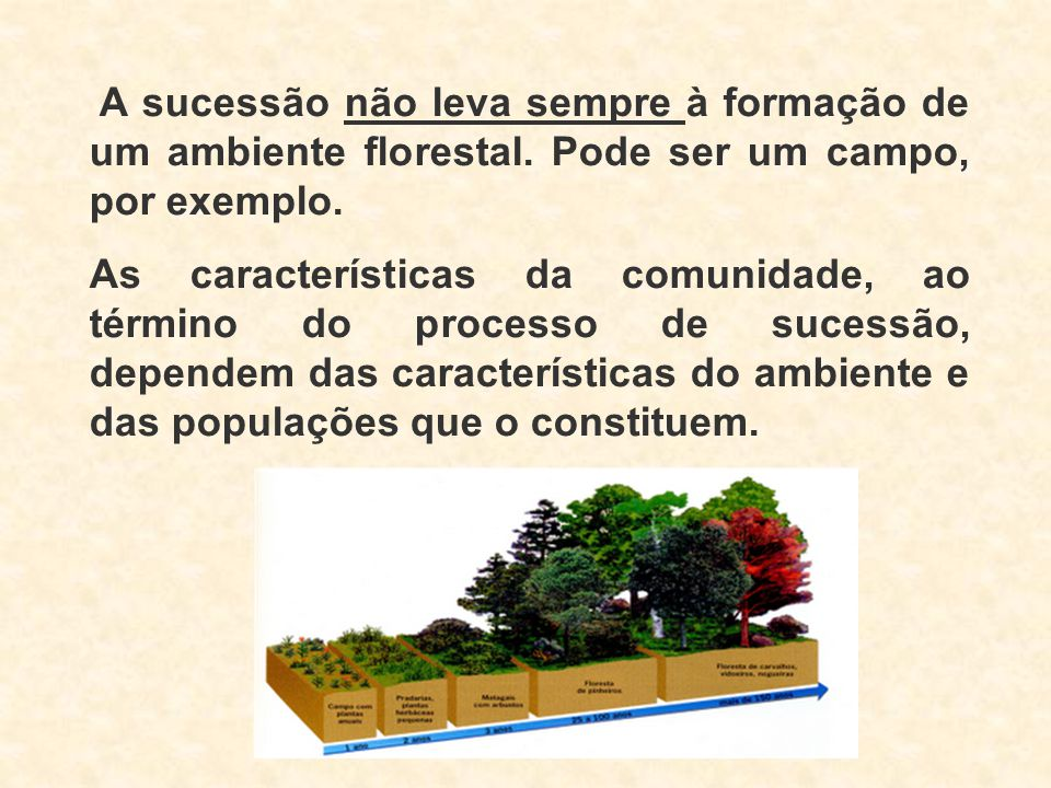 A sucessão não leva sempre à formação de um ambiente florestal. Pode ser um campo, por exemplo. As características da comunidade, ao término do proces