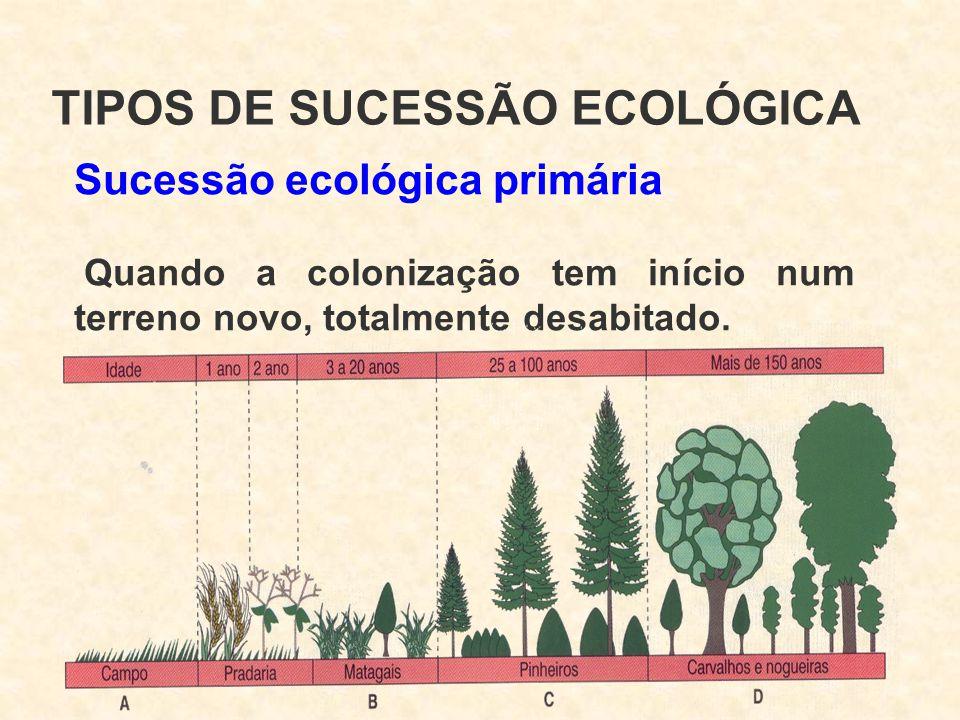 Sucessão ecológica primária Quando a colonização tem início num terreno novo, totalmente desabitado. TIPOS DE SUCESSÃO ECOLÓGICA
