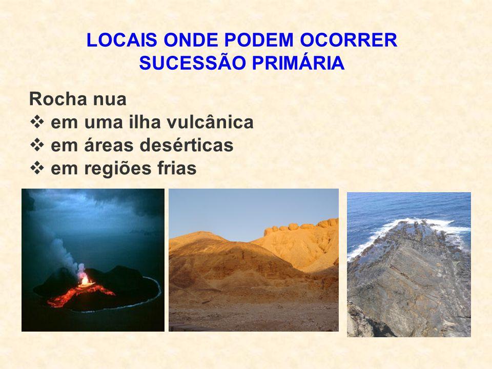 LOCAIS ONDE PODEM OCORRER SUCESSÃO PRIMÁRIA Rocha nua  em uma ilha vulcânica  em áreas desérticas  em regiões frias