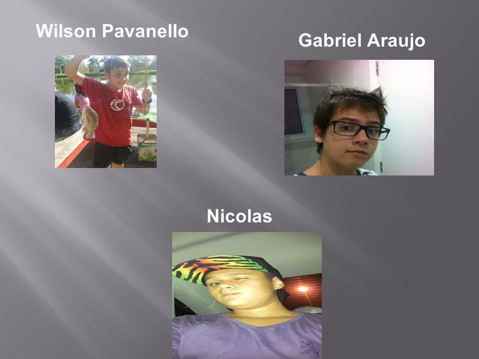 Wilson Pavanello Gabriel Araujo Nicolas