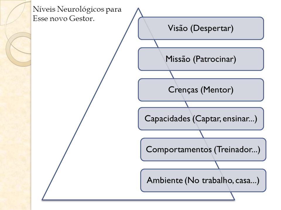 Visão (Despertar) Missão (Patrocinar) Crenças (Mentor) Capacidades (Captar, ensinar...) Comportamentos (Treinador...) Ambiente (No trabalho, casa...)