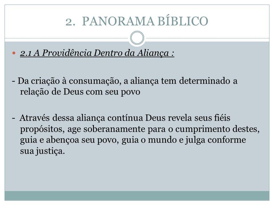 2. PANORAMA BÍBLICO 2.1 A Providência Dentro da Aliança : - Da criação à consumação, a aliança tem determinado a relação de Deus com seu povo - Atravé