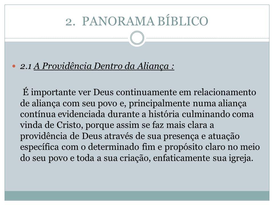 2. PANORAMA BÍBLICO 2.1 A Providência Dentro da Aliança : É importante ver Deus continuamente em relacionamento de aliança com seu povo e, principalme