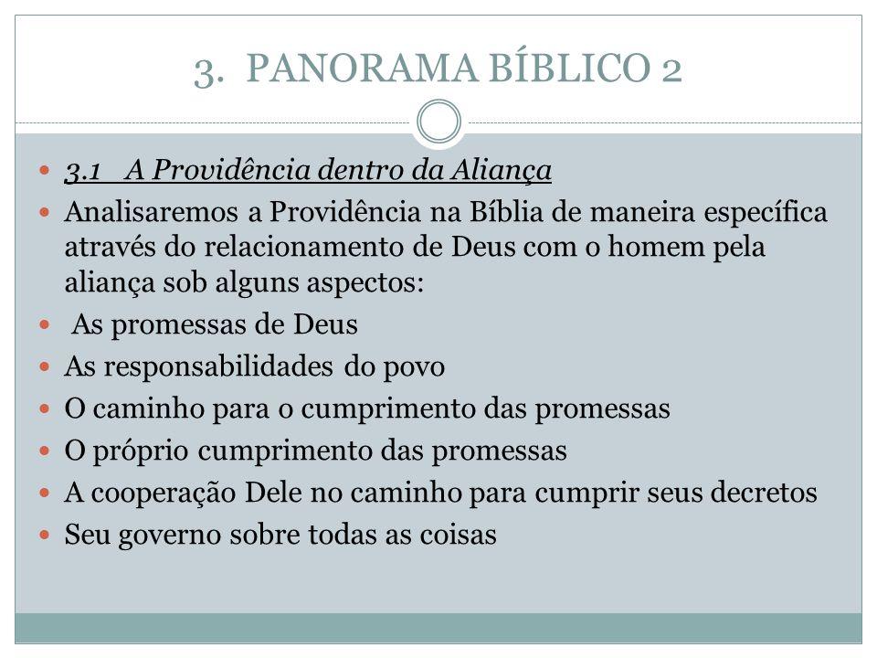 3. PANORAMA BÍBLICO 2 3.1A Providência dentro da Aliança Analisaremos a Providência na Bíblia de maneira específica através do relacionamento de Deus