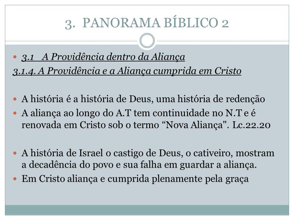 3. PANORAMA BÍBLICO 2 3.1A Providência dentro da Aliança 3.1.4. A Providência e a Aliança cumprida em Cristo A história é a história de Deus, uma hist