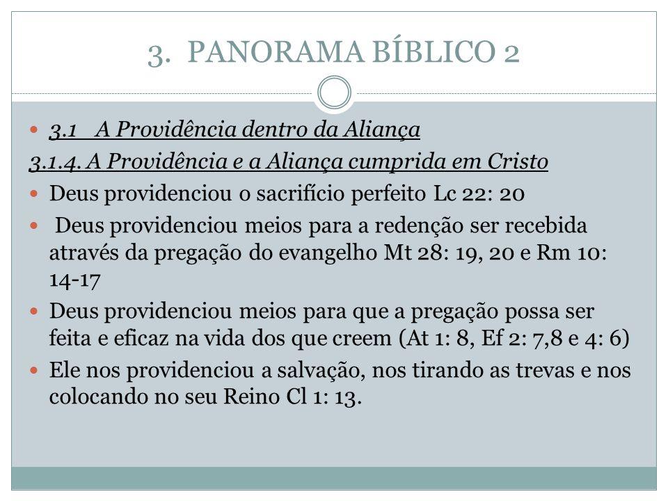 3. PANORAMA BÍBLICO 2 3.1A Providência dentro da Aliança 3.1.4. A Providência e a Aliança cumprida em Cristo Deus providenciou o sacrifício perfeito L