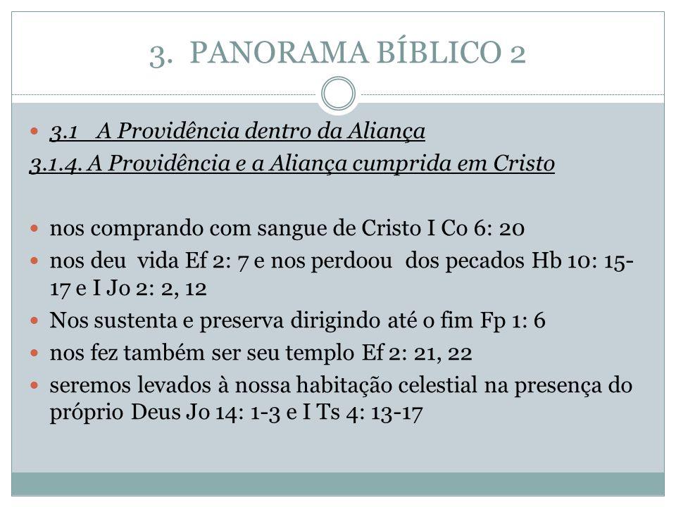 3. PANORAMA BÍBLICO 2 3.1A Providência dentro da Aliança 3.1.4. A Providência e a Aliança cumprida em Cristo nos comprando com sangue de Cristo I Co 6