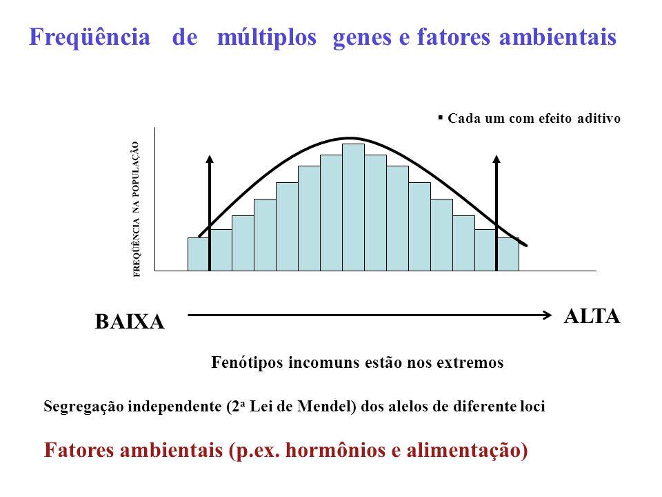 ALTA FREQÜÊNCIA NA POPULAÇÃO BAIXA Freqüência de múltiplos genes e fatores ambientais  Cada um com efeito aditivo Fenótipos incomuns estão nos extrem