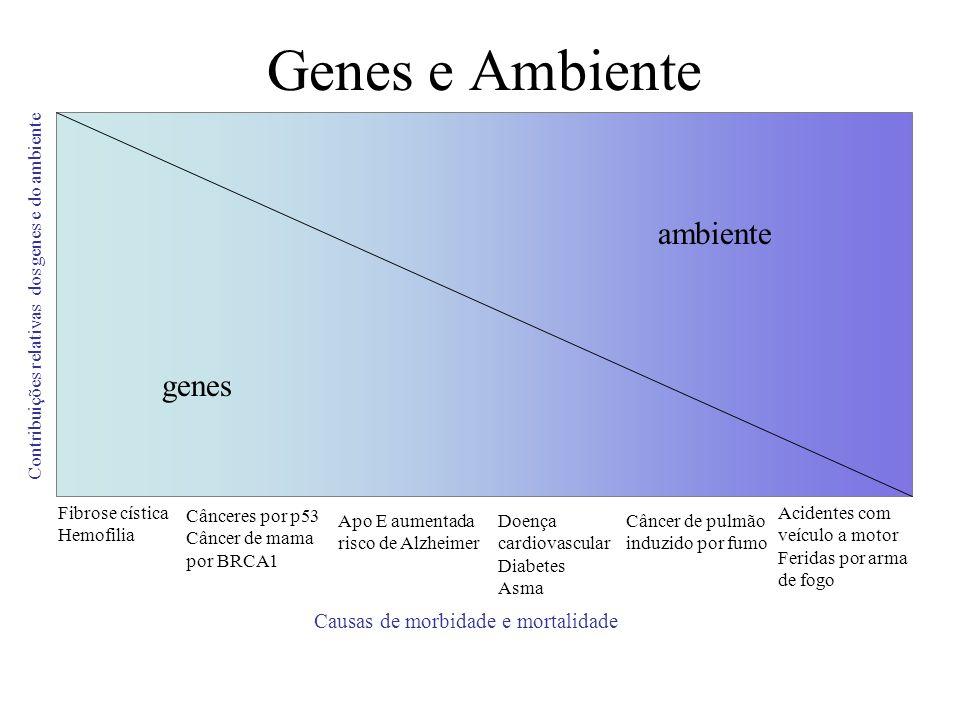 Genes e Ambiente genes ambiente Contribuições relativas dos genes e do ambiente Fibrose cística Hemofilia Cânceres por p53 Câncer de mama por BRCA1 Ap