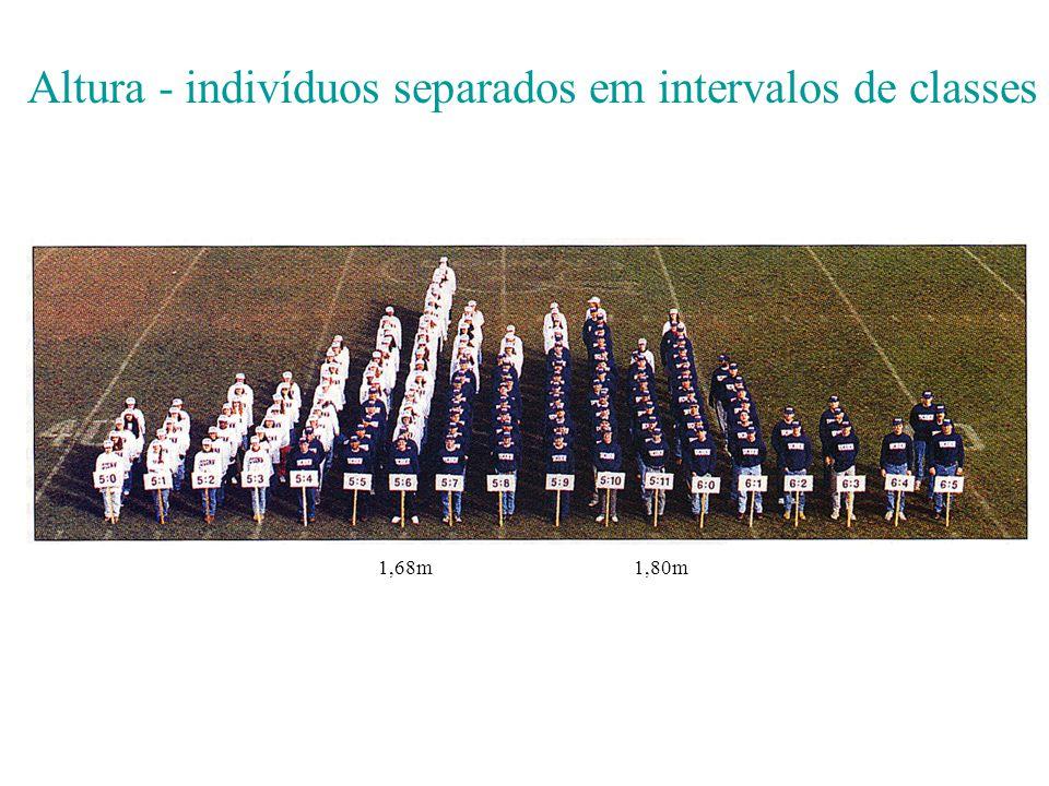 Altura - indivíduos separados em intervalos de classes 1,68m1,80m