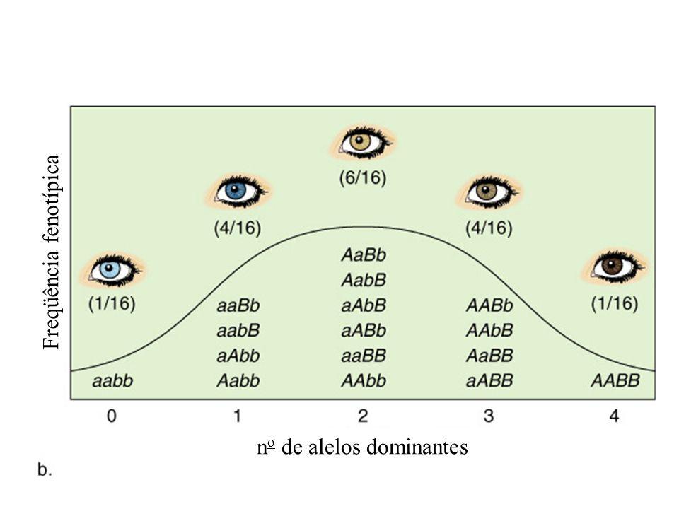 Freqüência fenotípica n o de alelos dominantes