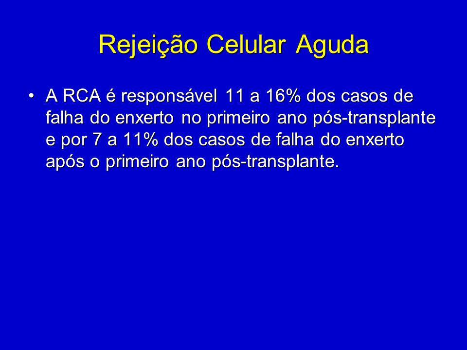 Rejeição Celular Aguda A RCA é responsável 11 a 16% dos casos de falha do enxerto no primeiro ano pós-transplante e por 7 a 11% dos casos de falha do