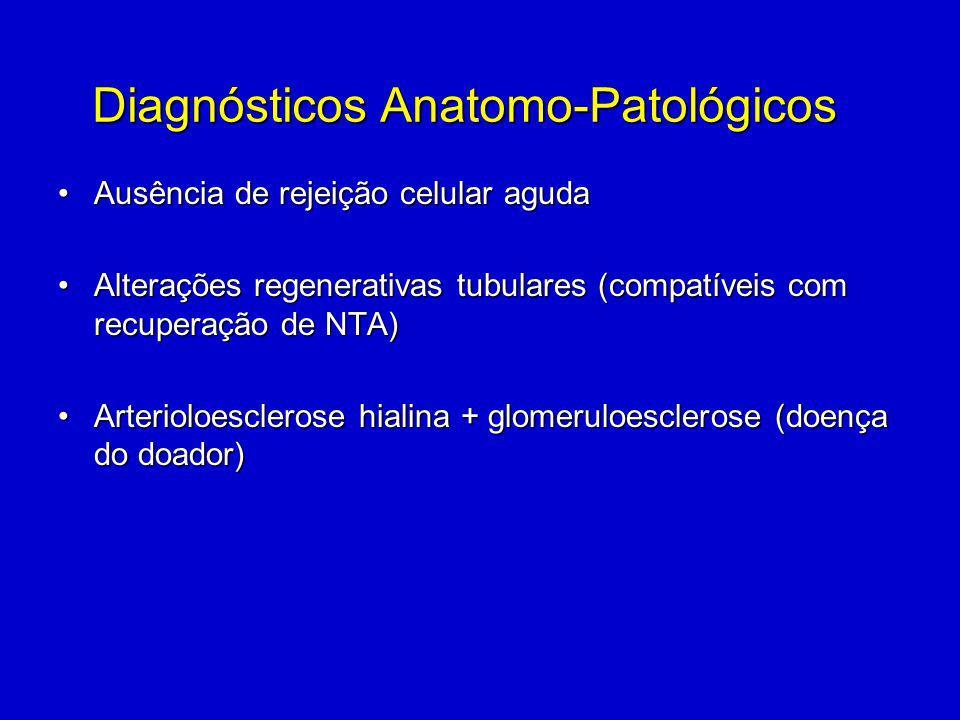 Diagnósticos Anatomo-Patológicos Ausência de rejeição celular agudaAusência de rejeição celular aguda Alterações regenerativas tubulares (compatíveis com recuperação de NTA)Alterações regenerativas tubulares (compatíveis com recuperação de NTA) Arterioloesclerose hialina + glomeruloesclerose (doença do doador)Arterioloesclerose hialina + glomeruloesclerose (doença do doador)