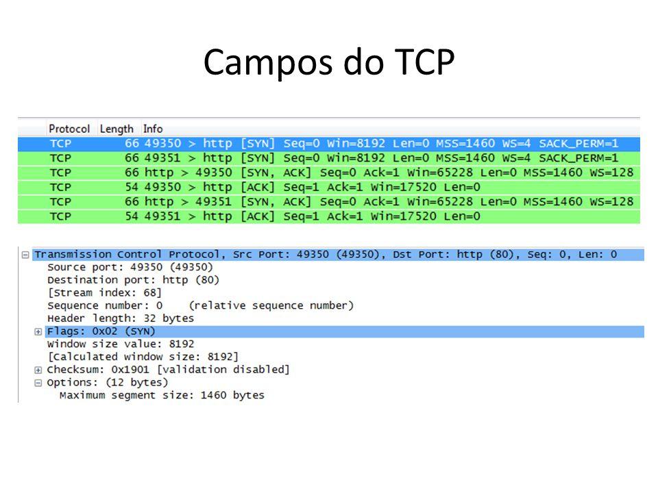 Campos do TCP