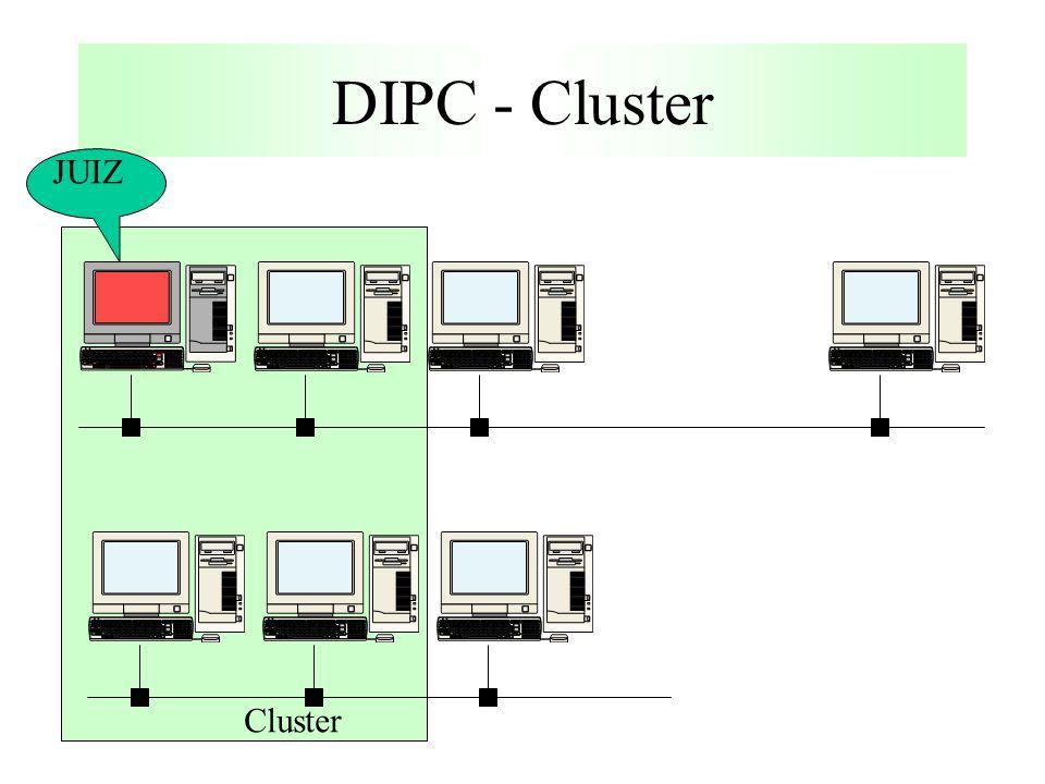 DIPC - Cluster Cluster JUIZ
