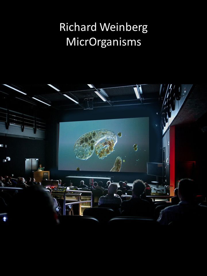 Richard Weinberg MicrOrganisms