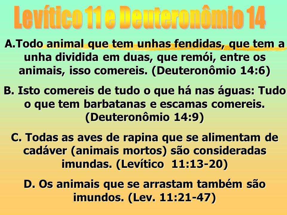 A.Todo animal que tem unhas fendidas, que tem a unha dividida em duas, que remói, entre os animais, isso comereis. (Deuteronômio 14:6) B. Isto comerei