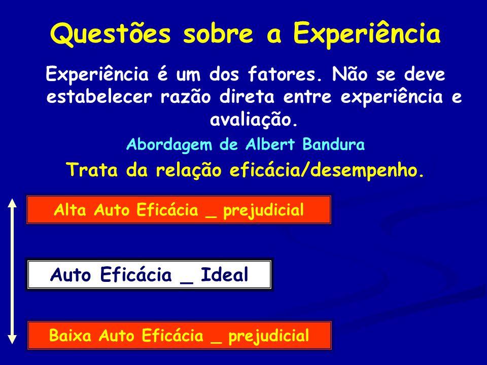 Questões sobre a Experiência Experiência é um dos fatores.