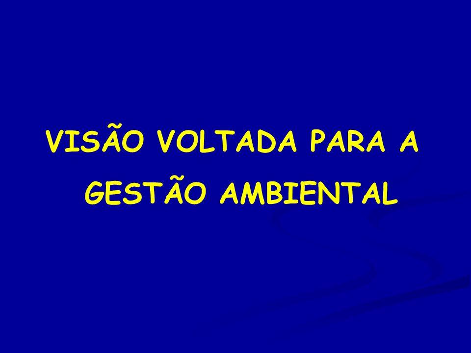 VISÃO VOLTADA PARA A GESTÃO AMBIENTAL