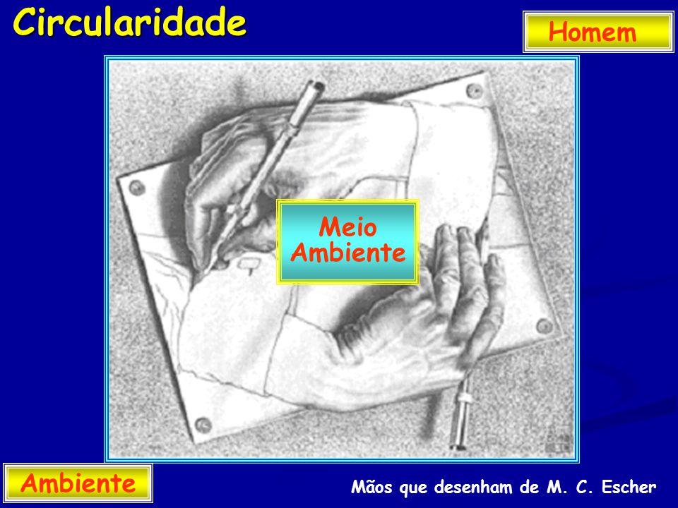 Circularidade Homem Ambiente Meio Ambiente Mãos que desenham de M. C. Escher