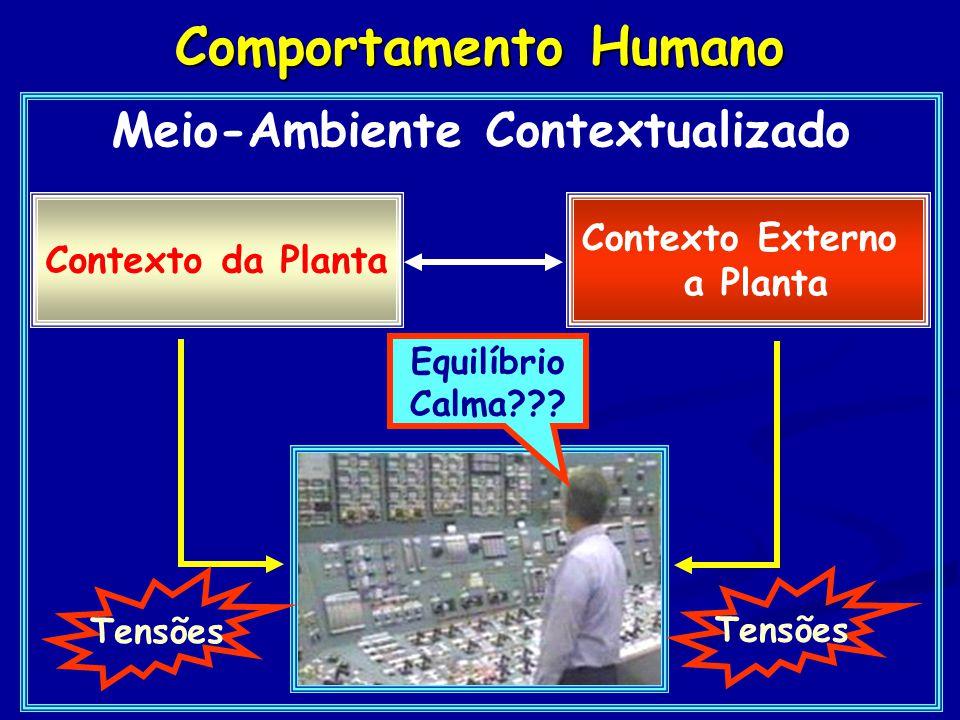 Meio-Ambiente Contextualizado Contexto da Planta Contexto Externo a Planta Tensões Equilíbrio Calma???