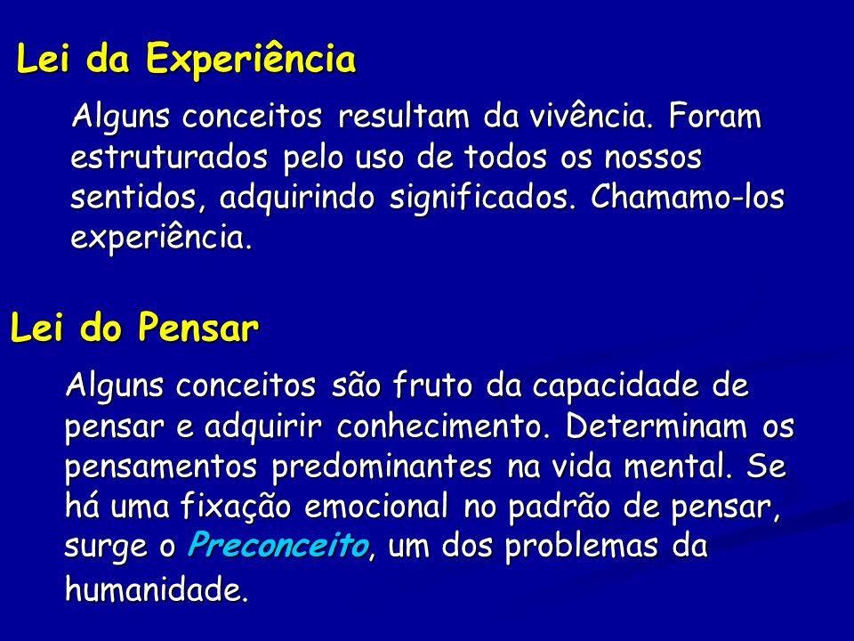 Lei da Experiência Alguns conceitos resultam da vivência.