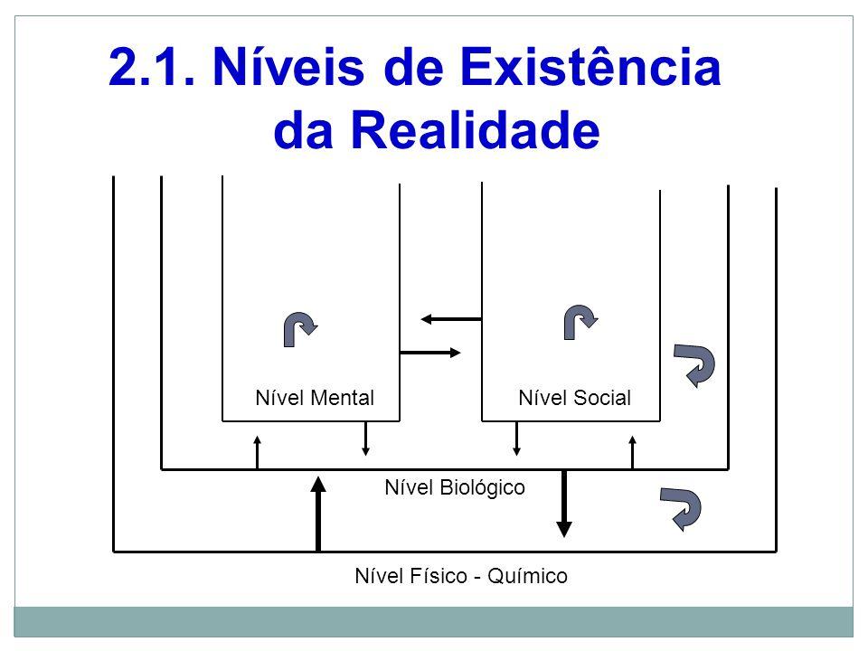 Nível Físico - Químico Nível Biológico Nível MentalNível Social 2.1.