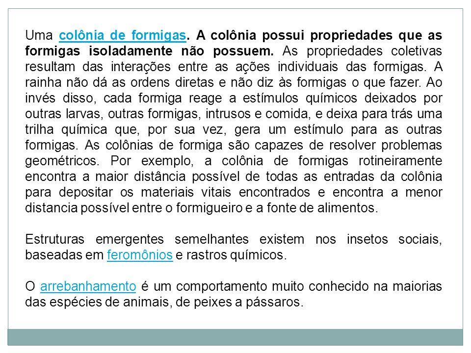 Uma colônia de formigas. A colônia possui propriedades que as formigas isoladamente não possuem.