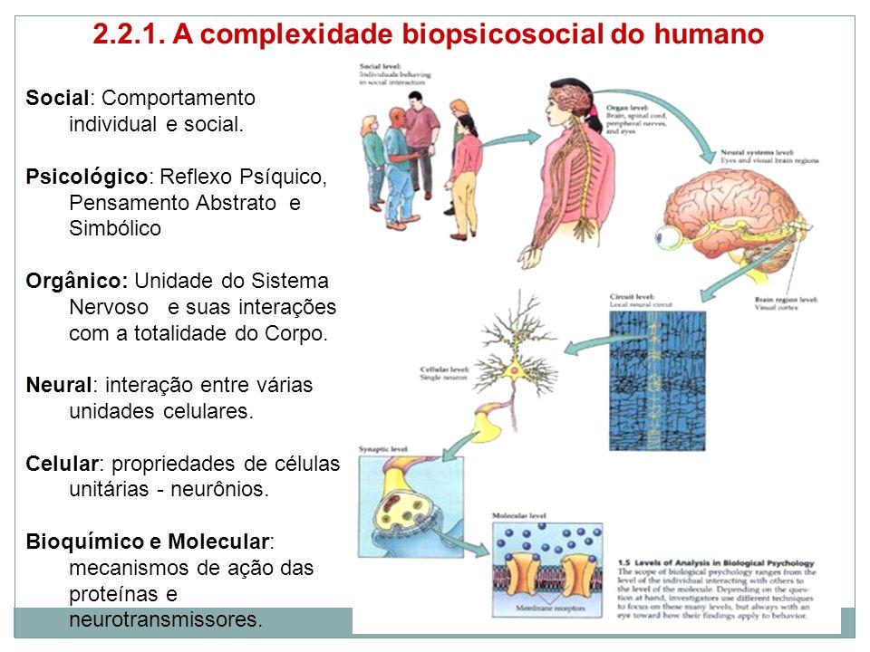 2.2.1. A complexidade biopsicosocial do humano Social: Comportamento individual e social.