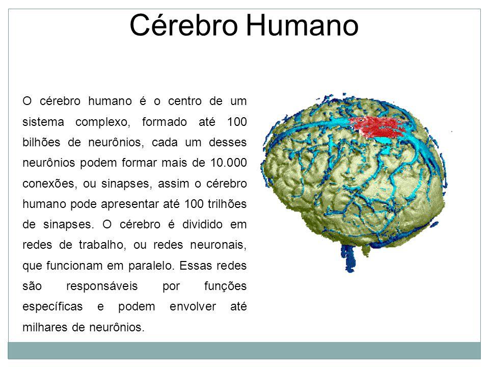 Cérebro Humano O cérebro humano é o centro de um sistema complexo, formado até 100 bilhões de neurônios, cada um desses neurônios podem formar mais de 10.000 conexões, ou sinapses, assim o cérebro humano pode apresentar até 100 trilhões de sinapses.