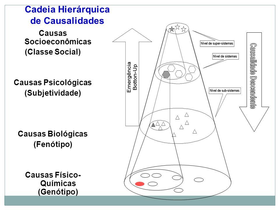 Cadeia Hierárquica de Causalidades Causas Socioeconômicas (Classe Social) Causas Psicológicas (Subjetividade) Causas Biológicas (Fenótipo) Causas Físico- Químicas (Genótipo)