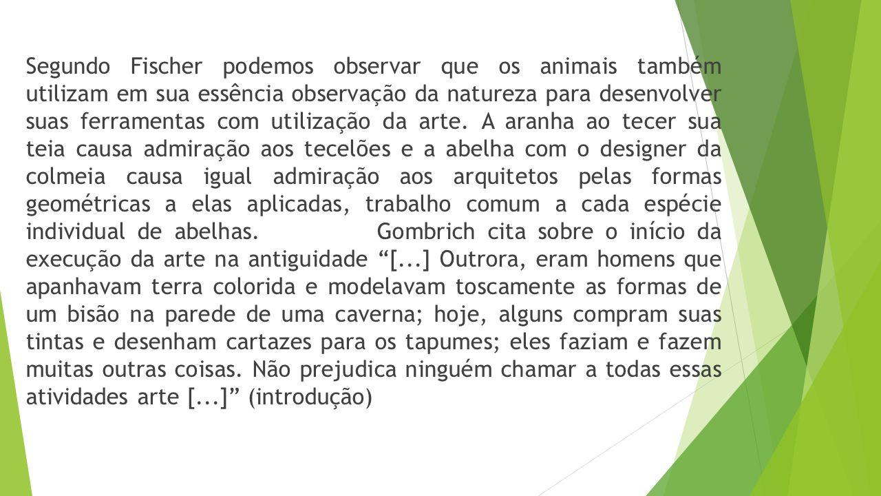 Segundo Fischer podemos observar que os animais também utilizam em sua essência observação da natureza para desenvolver suas ferramentas com utilização da arte.