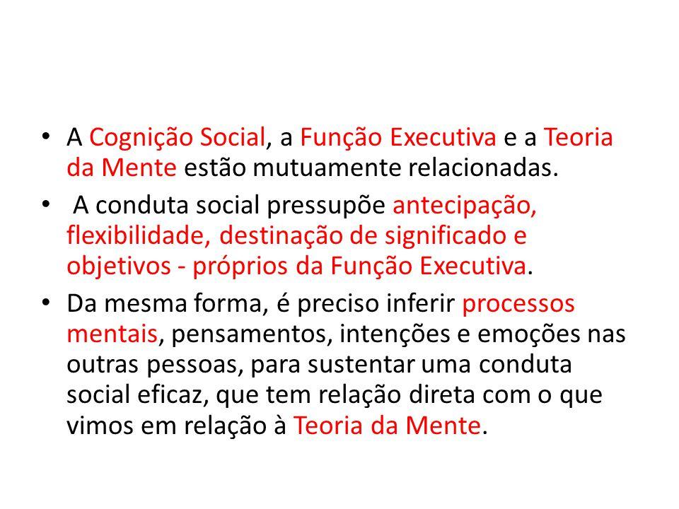 A Cognição Social, a Função Executiva e a Teoria da Mente estão mutuamente relacionadas.