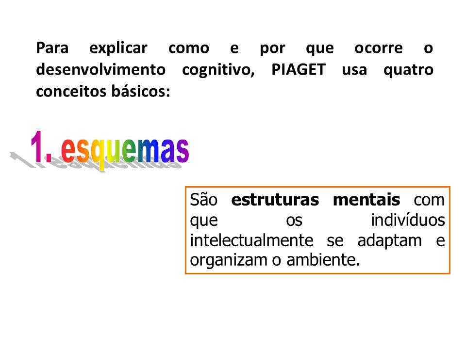 Para explicar como e por que ocorre o desenvolvimento cognitivo, PIAGET usa quatro conceitos básicos: São estruturas mentais com que os indivíduos intelectualmente se adaptam e organizam o ambiente.