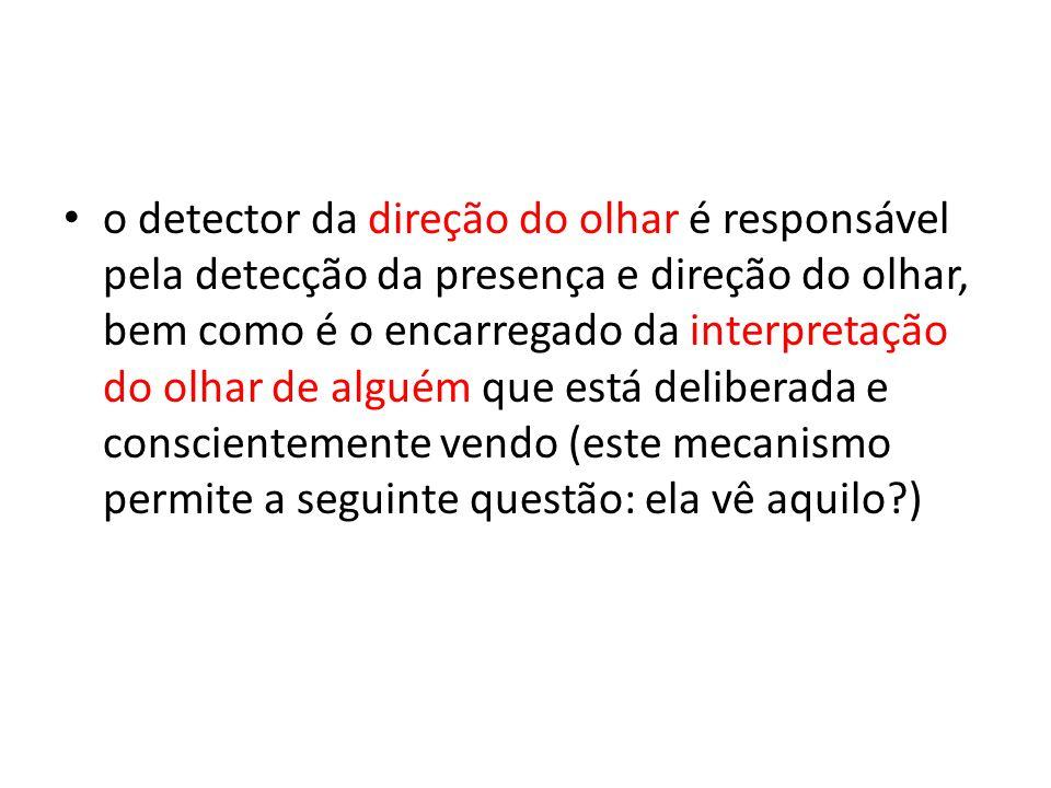 o detector da direção do olhar é responsável pela detecção da presença e direção do olhar, bem como é o encarregado da interpretação do olhar de alguém que está deliberada e conscientemente vendo (este mecanismo permite a seguinte questão: ela vê aquilo )