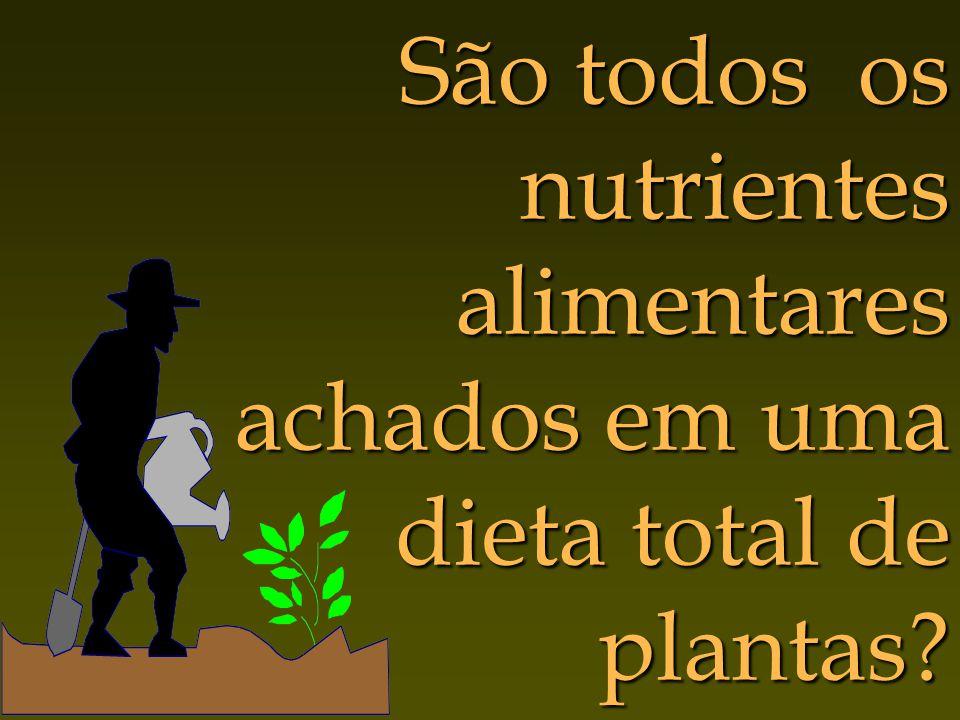São todos os nutrientes alimentares achados em uma dieta total de plantas?