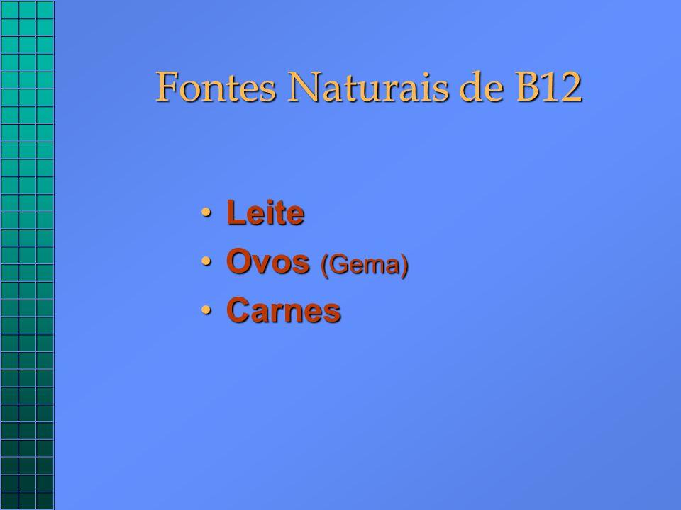 Fontes Naturais de B12 LeiteLeite Ovos (Gema)Ovos (Gema) CarnesCarnes