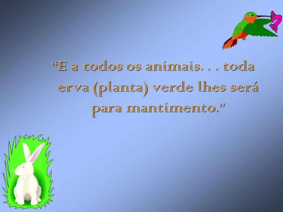"""""""E a todos os animais... toda erva (planta) verde lhes será para mantimento."""""""