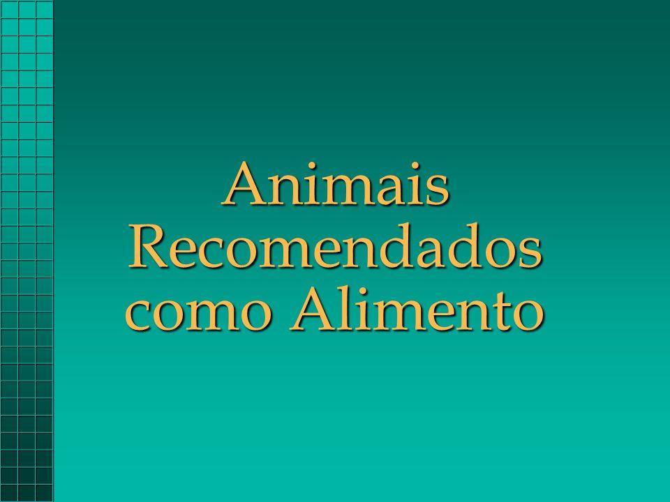 Animais Recomendados como Alimento