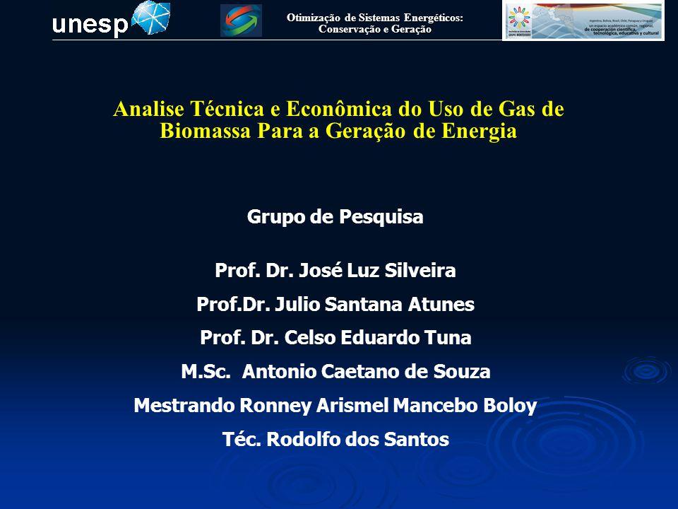 Analise Técnica e Econômica do Uso de Gas de Biomassa Para a Geração de Energia Otimização de Sistemas Energéticos: Conservação e Geração Grupo de Pes