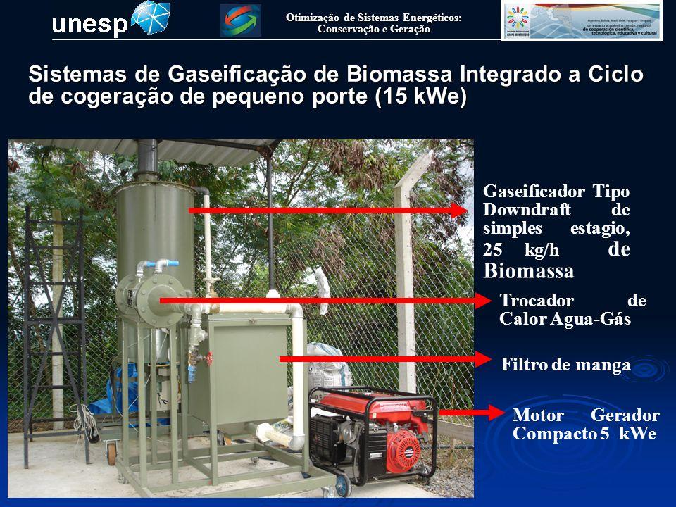 Otimização de Sistemas Energéticos: Conservação e Geração Sistemas de Gaseificação de Biomassa Integrado a Ciclo de cogeração de pequeno porte (15 kWe
