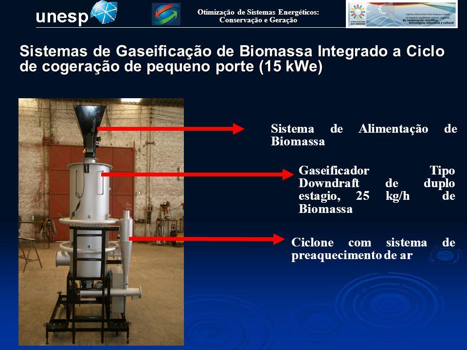 Otimização de Sistemas Energéticos: Conservação e Geração Gaseificador Tipo Downdraft de duplo estagio, 25 kg/h de Biomassa Sistema de Alimentação de