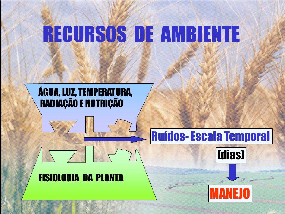 RECURSOS DE AMBIENTE Ruídos- Escala Temporal (dias) MANEJO ÁGUA, LUZ, TEMPERATURA, RADIAÇÃO E NUTRIÇÃO FISIOLOGIA DA PLANTA