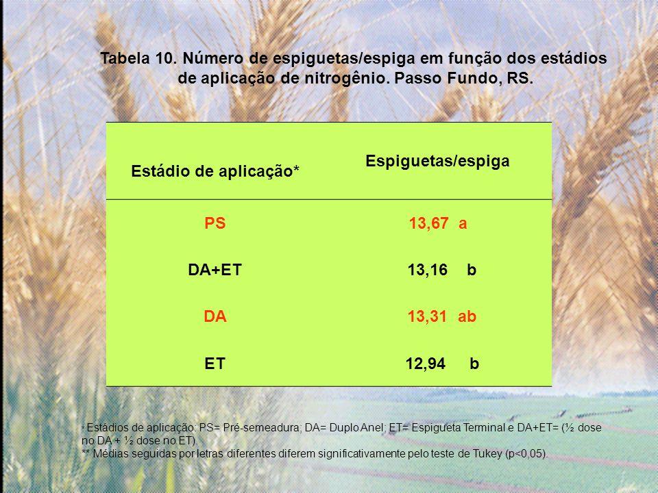 Tabela 10.Número de espiguetas/espiga em função dos estádios de aplicação de nitrogênio.