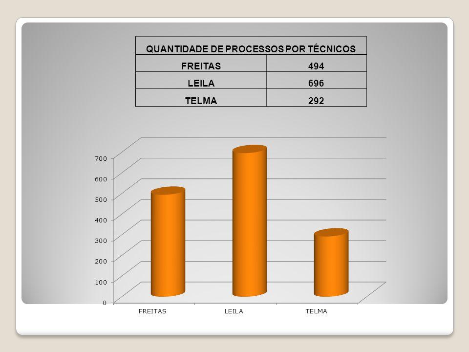 QUANTIDADE DE PROCESSOS POR TÉCNICOS FREITAS494 LEILA696 TELMA292