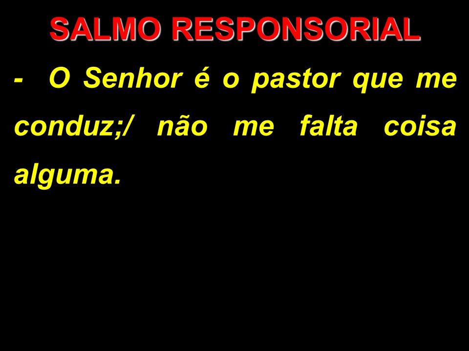 SALMO RESPONSORIAL - O Senhor é o pastor que me conduz;/ não me falta coisa alguma.