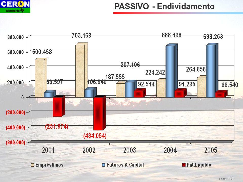 Fonte: FGC PASSIVO - Endividamento