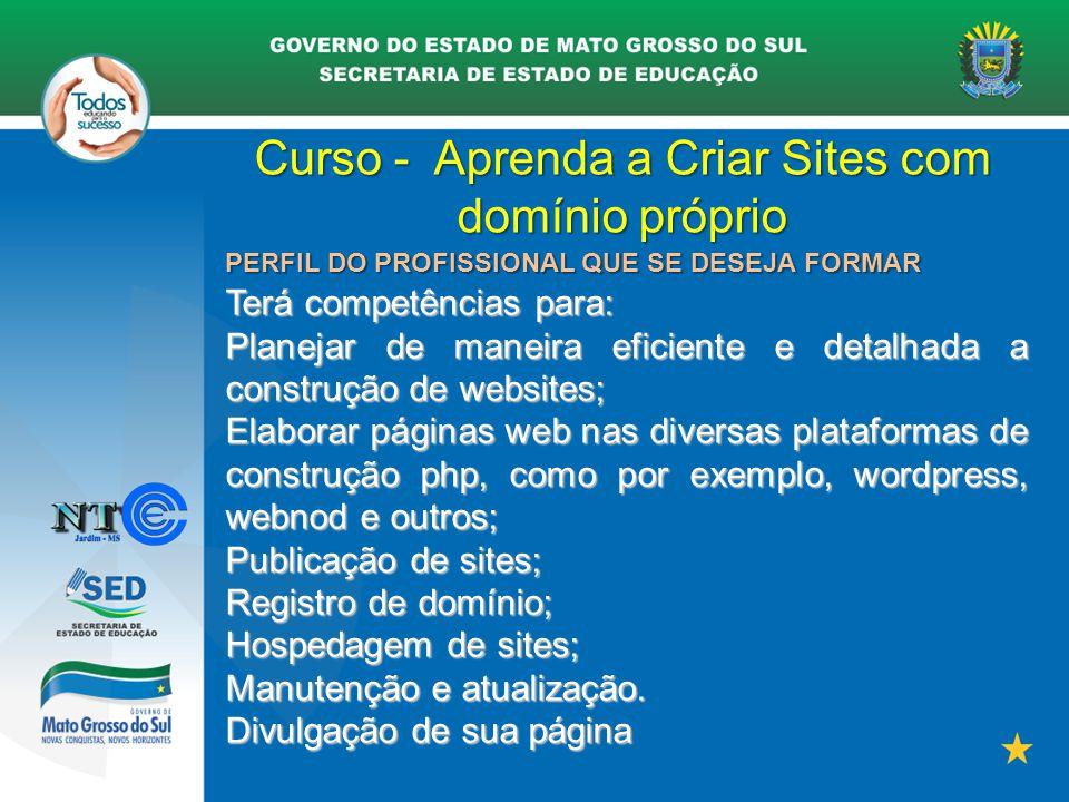 Curso - Aprenda a Criar Sites com domínio próprio PERFIL DO PROFISSIONAL QUE SE DESEJA FORMAR Terá competências para: Planejar de maneira eficiente e
