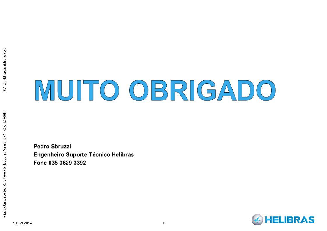 18 Set 2014 8 Helibras / Jornada de Seg. Op. / Prevenção de Acid. na Manutenção / 1,v.0 / /18/09/2014 © Airbus Helicopters rights reserved